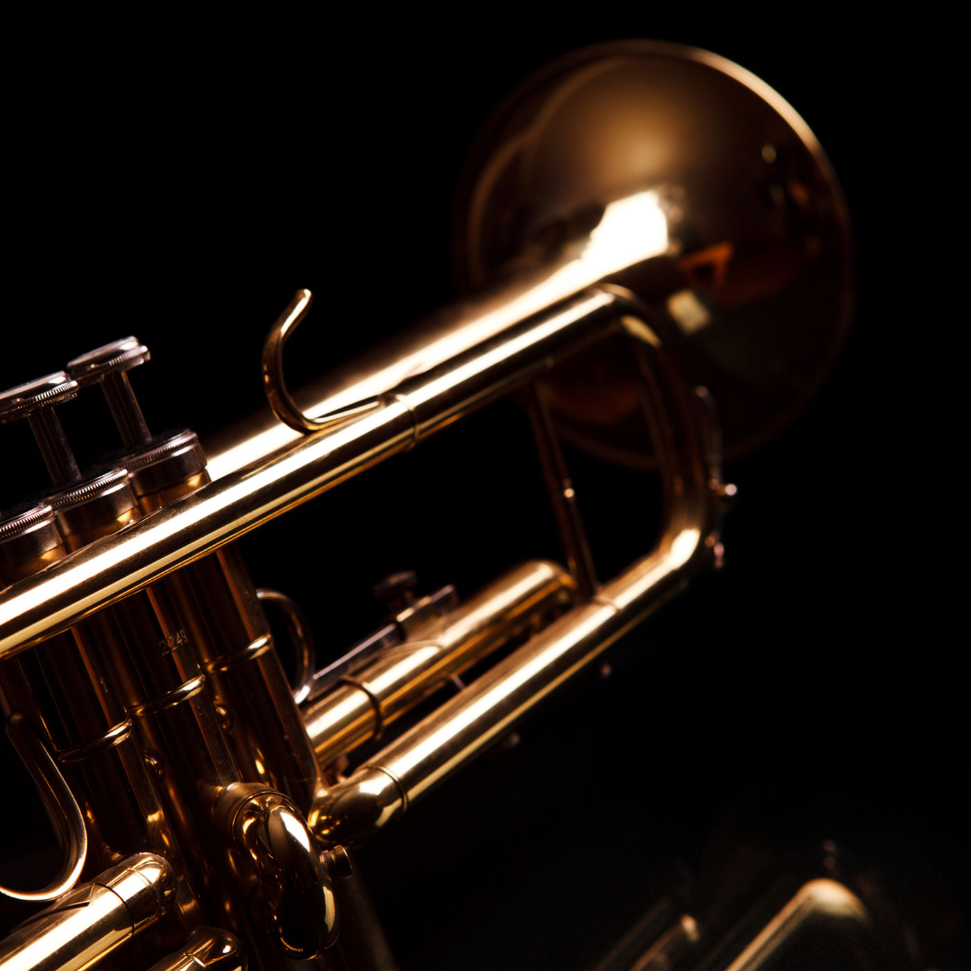 A brass jazz instrument. MNS Attorneys can assist with recording and publishing agreements.